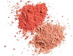 beautycounter_color-sweep-blush-duo_flamingo-apricot_1534x1168_view2